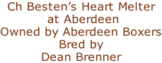 Ch Besten's Heart Melter  at Aberdeen Owned by Aberdeen Boxers Bred by Dean Brenner
