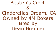Besten's Cinch  &  Cinderellas Dream, CA Owned by 4M Boxers Bred by Dean Brenner