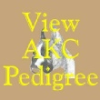 Click to view AKC pedigree